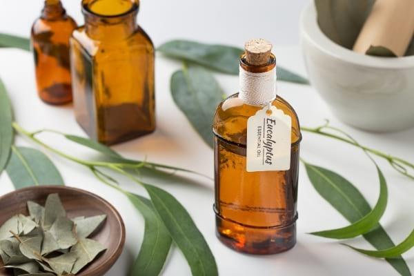 Plusieurs flacons d'huile essentielle d'eucalyptus posés sur une table