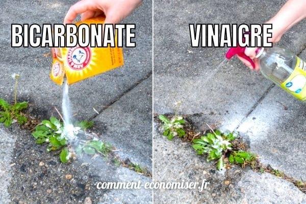 Utilisez un mélange de bicarbonate de soude et de vinaigre pour tuer les mauvaises herbes.
