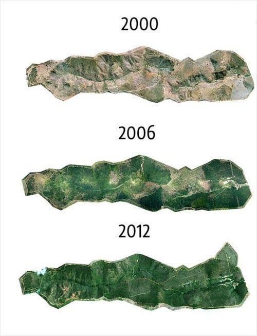 évolution de la forêt amazonienne de 2000 à 2012