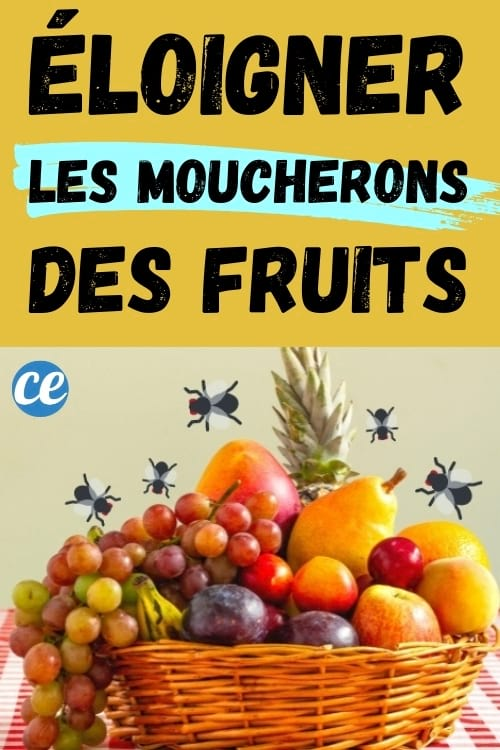panier de fruits avec moucherons : astuce pour les éloigner