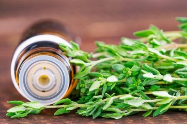 Quelle odeur repousse les moustiques ? L'huile essentielle de thym.