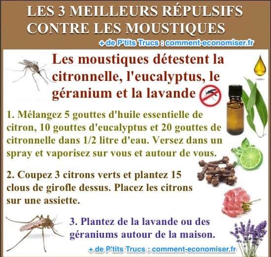 Les 3 meilleurs r pulsifs contre les moustiques simples - Lavande contre moustique ...