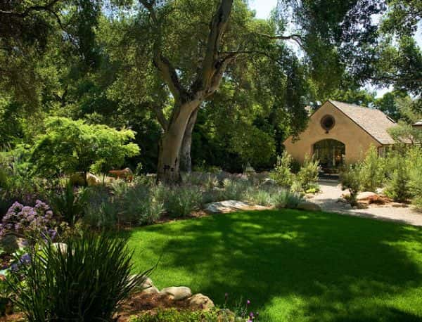 Utilisez des plantes et des herbes aux couleurs vives.