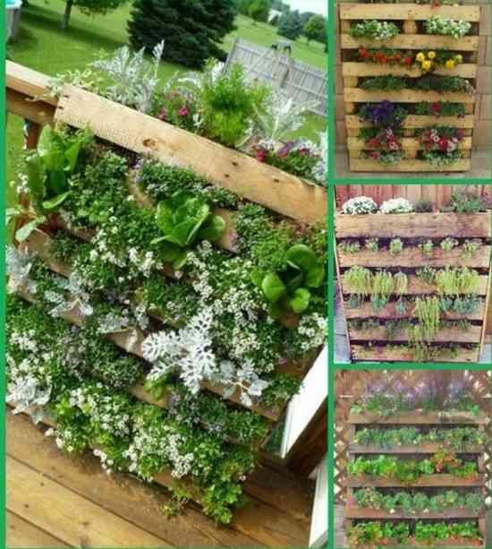 36 fa ons ing nieuses de recycler de vieilles palettes en - Jardin vertical palette ...