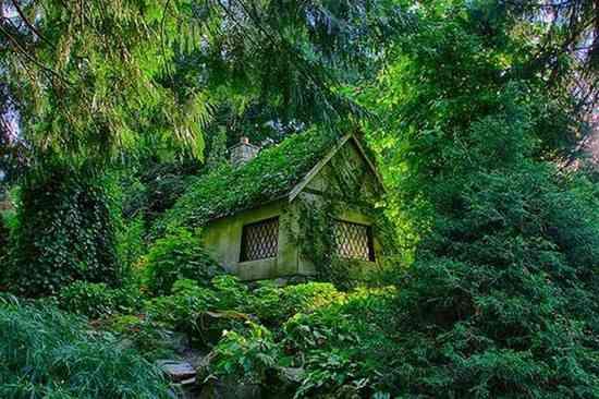 cottage féérique en pleine naturel au canada