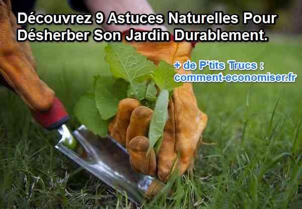 Assez 9 Façons Naturelles de Tuer les Mauvaises Herbes. NH21