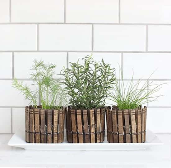 petit jardin dans pot avec épingle à linge