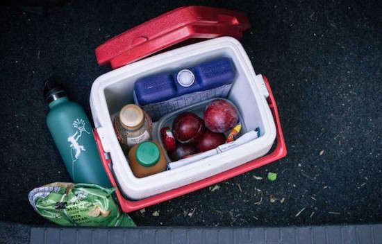 Pourquoi faut-il cacher des snacks dans sa voiture quand on va faire du camping ?