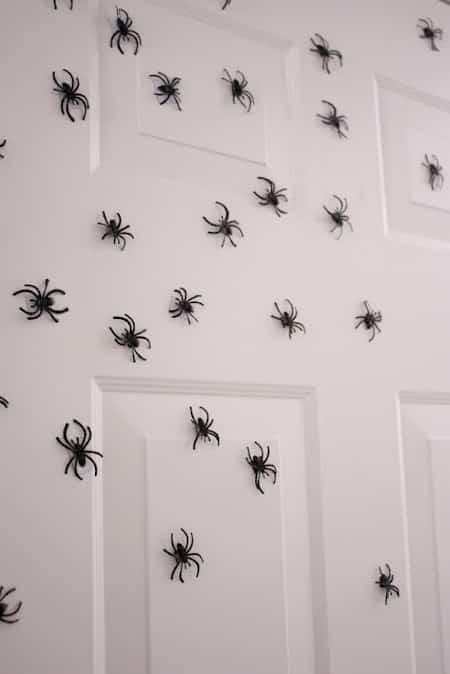 une attaque d'araignée