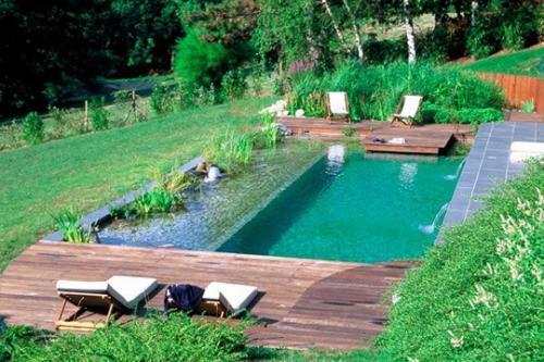 Piscine cologique les secrets d 39 une baignade au naturel for Comment faire une piscine