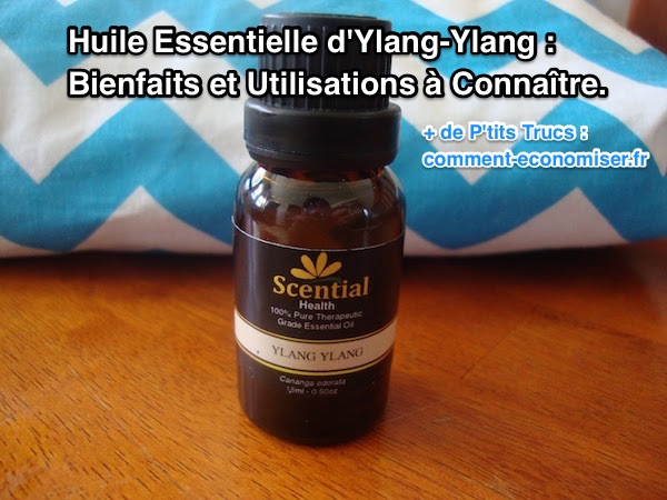 conseils et vertus de l'huile essentielle d'ylang ylang