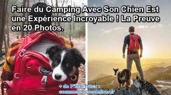 Gestion chien blessé en promenade Camper-avec-son-chien
