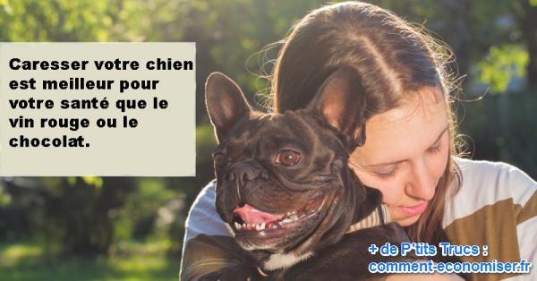 s'occuper d'un chien est bon pour la santé
