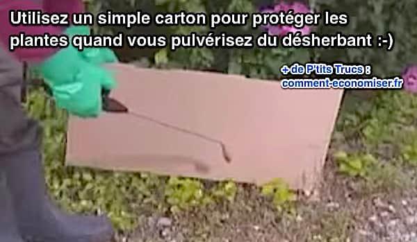 Utilisez un carton pour désherber au bon endroit