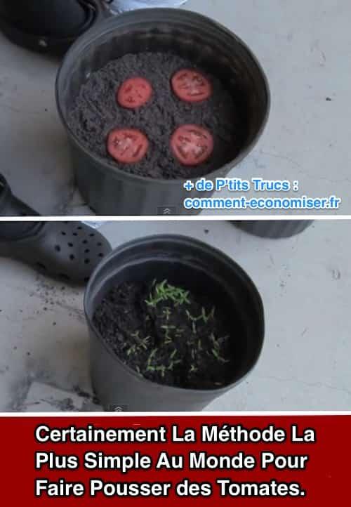 La m thode la plus simple au monde pour faire pousser des tomates - Methode simple pour mesurer terre ...