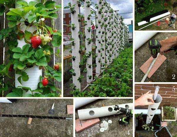 Extrêmement 23 Astuces Ingénieuses Pour Vous Simplifier le Jardinage. IN37