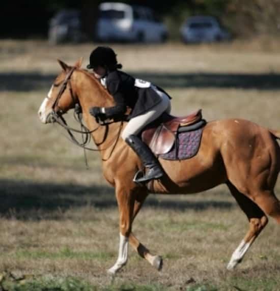 Astuces de survie comment ma triser un cheval qui s 39 emballe - Comment dessiner un cheval au galop ...