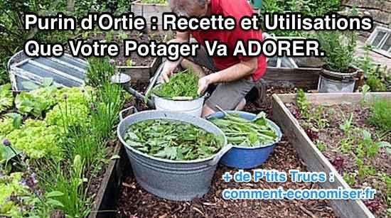 Purin d 39 ortie recette et utilisations que votre potager va adorer - Purin d ortie utilisation ...