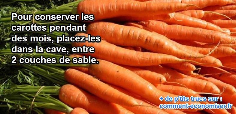Comment conserver les carottes pendant des mois - Comment conserver les carottes ...