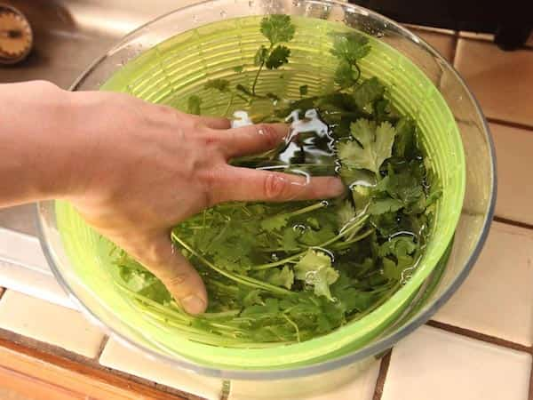 Comment conserver vos herbes aromatiques 3 fois plus longtemps - Comment conserver la salade ...