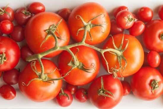des tomates sont conservés hors du frigo