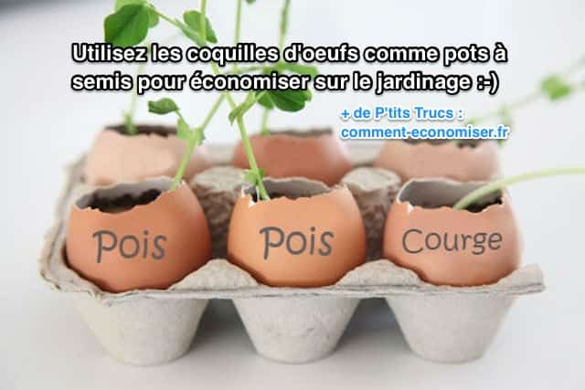 utilisez les coquilles d 39 oeufs comme pots semis pour conomiser sur le jardinage. Black Bedroom Furniture Sets. Home Design Ideas