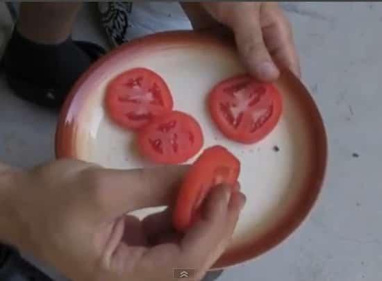 Coupez les tranches de tomates