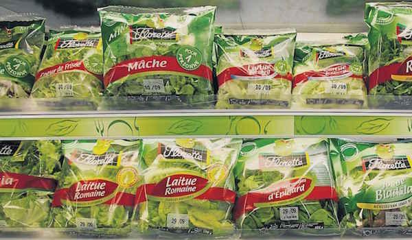 Quels sont les risques et dangers des salades en sachet ?