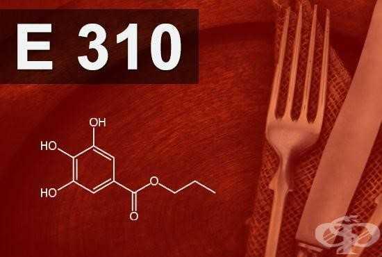 E310 conservateur dangereux pour santé