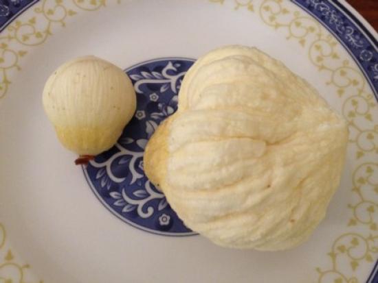 Embryon de noix de coco dans une assiette blanche