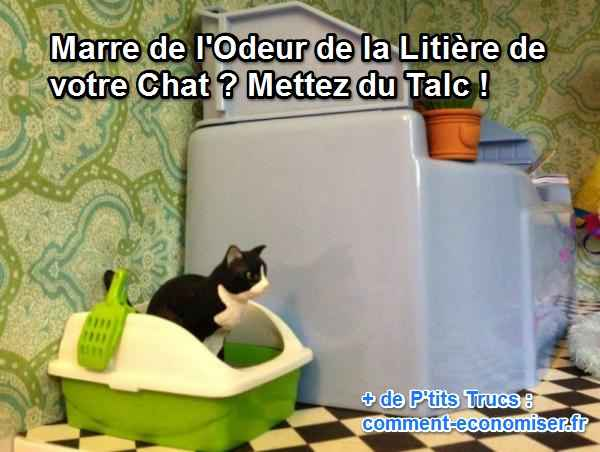 litiere chat talc