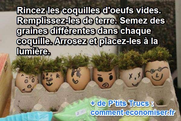 Un mini potager dans des coquilles d 39 oeufs pour les enfants - Cloque du pecher coquille d oeuf ...