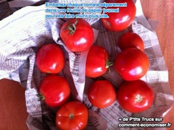 Emballer les tomates dans du papier journal pour les faire mûrir plus rapidement