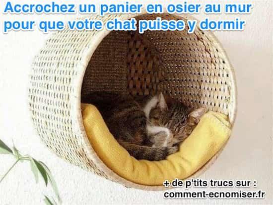 un chat dort dans son panier suspendu