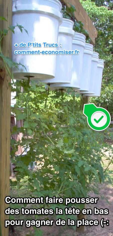 Comment faire pousser des tomates l 39 envers pour gagner - Comment faire grossir les tomates ...