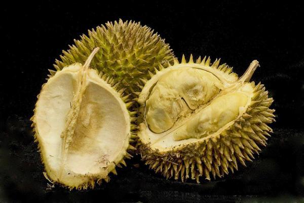 le durian est un fruit exotique qui sent mauvais