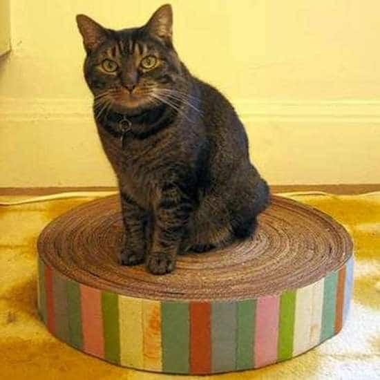 griffoir diy pour votre chat en carton recyclé