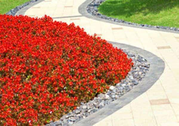 11 Superbes Bordures De Jardin Que Vous Aimeriez Bien Avoir À La