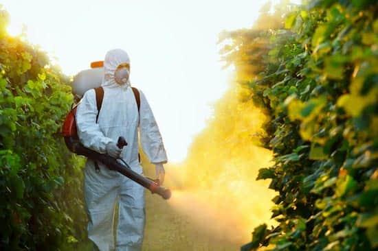 N'utilisez pas d'insecticides contre les abeilles