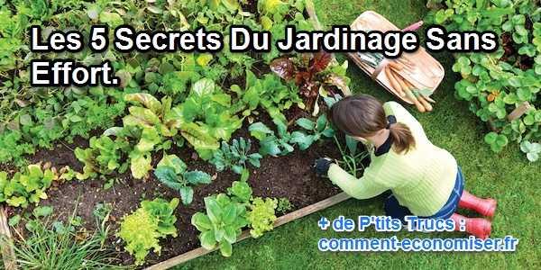 Les 5 Secrets Du Jardinage Sans Effort
