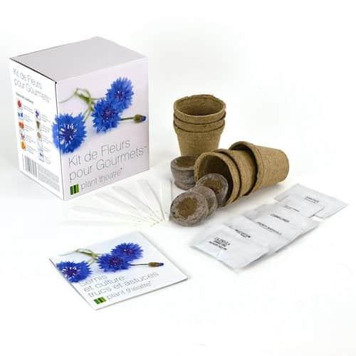 Kit de fleurs comestibles pas cher