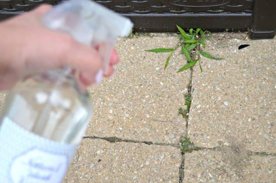 Comment faire pour utiliser le désherbant naturel ?