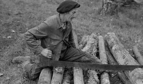 Votre grand-père en train de scier un tronc comme un chef