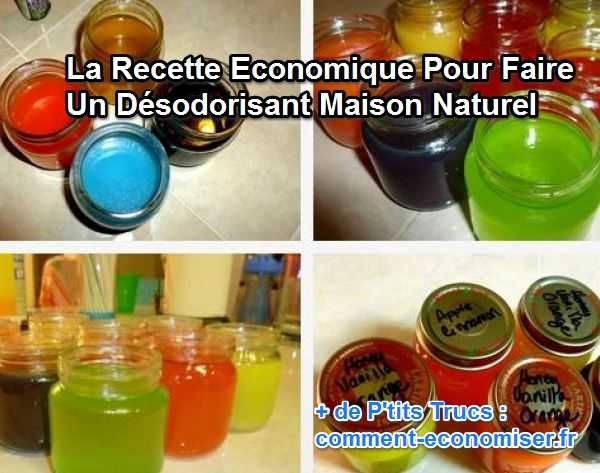 recette-economique-desodorisant-maison-naturel.jpg