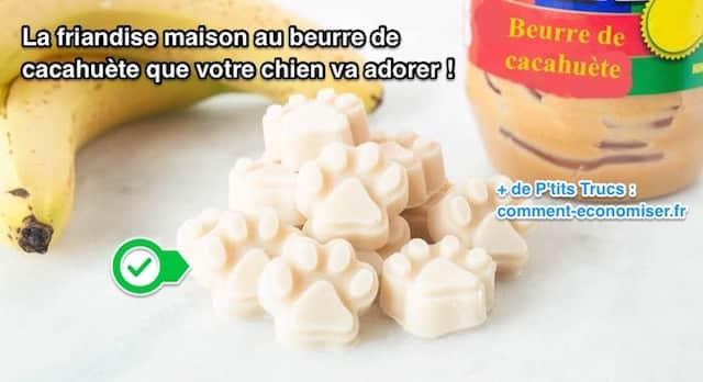 Super La Friandise Maison au Beurre de Cacahuète Que Votre Chien Va ADORER ! IR44