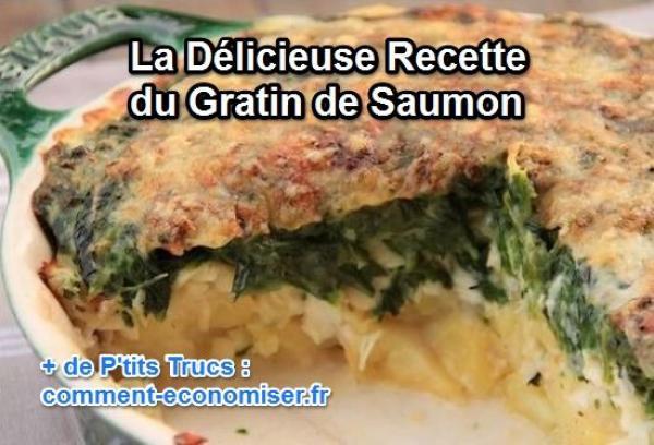 La Delicieuse Recette Du Gratin De Saumon