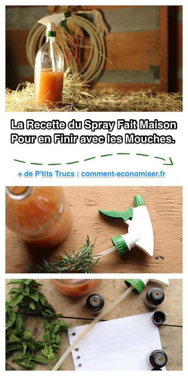 Recette Du Spray Fait Maison Contre Les Mouches