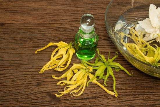 remèdes de grand-mère pour utiliser l'huile essentielle d'ylang ylang