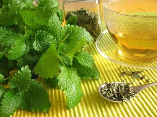 La mélisse est un remède naturel qui peut vous aider à soigner les boutons de fièvre.