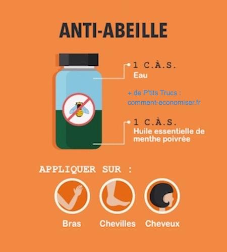 7 r pulsifs naturels contre les insectes l 39 efficacit - Repulsif fourmi huile essentielle ...